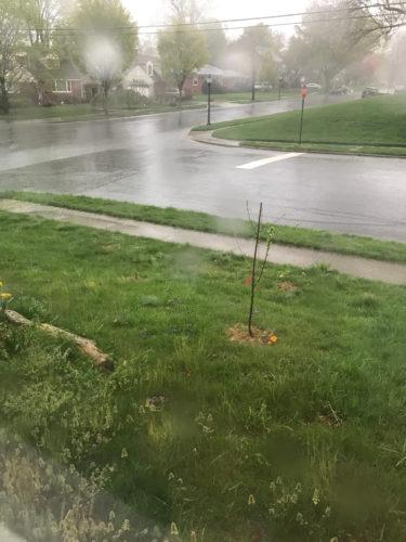 Heavy rain today